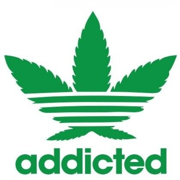 Majica Addicted Adidas