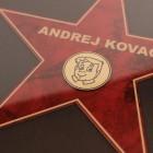 Plaketa Hollywoodska zvezda, 25 x 35 cm + GRAVIRANJE