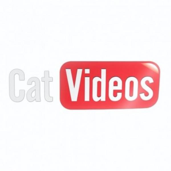 Cat videos nalepka