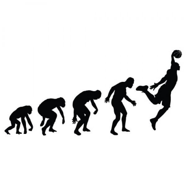 Evolucija košarkaš, nalepka za avto