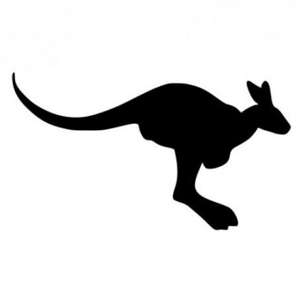 Kenguru nalepka za avto