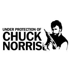 Nalepka Chuck Norris