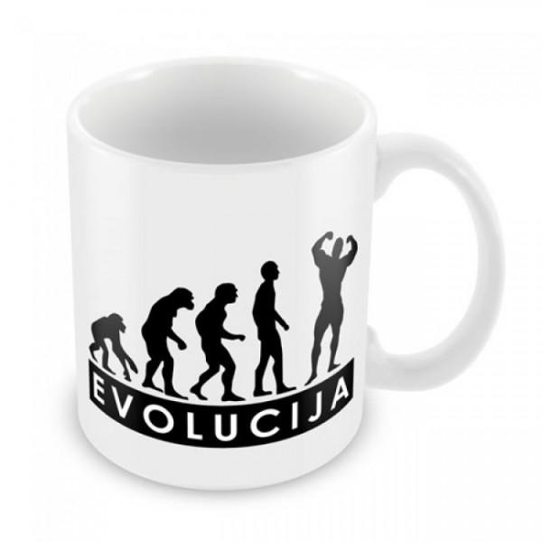 Skodelica Evolucija fitnes